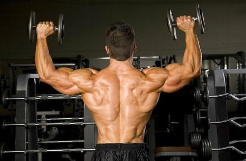 Программа тренировки плеч