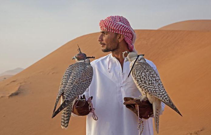 отдых в арабских эмиратах в марте