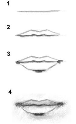 как нарисовать губы человека