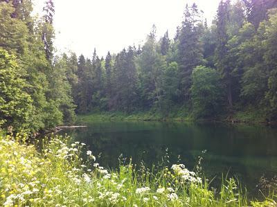радоновое озеро ленинградская область