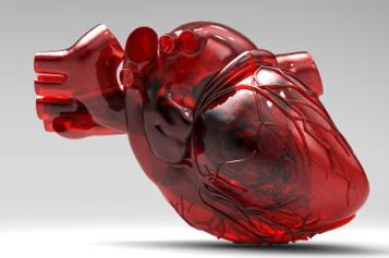 кардиопатия симптомы