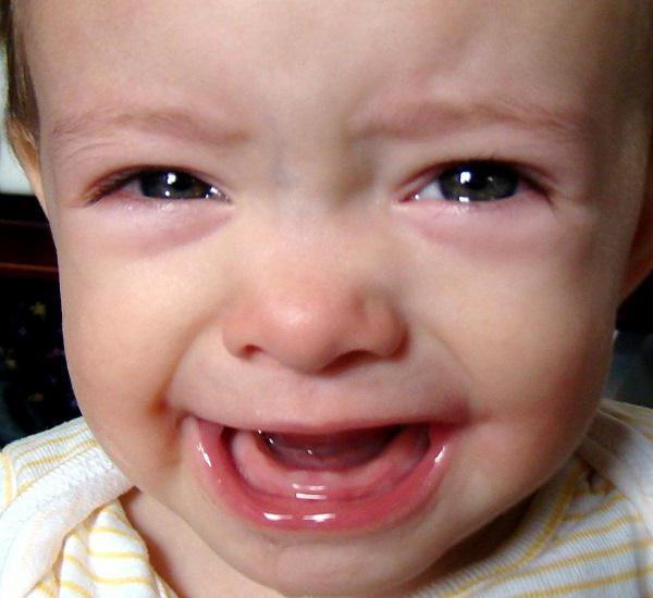 прорезывание глазных зубов