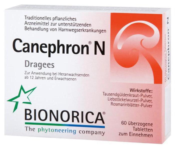 канефрон и беременность