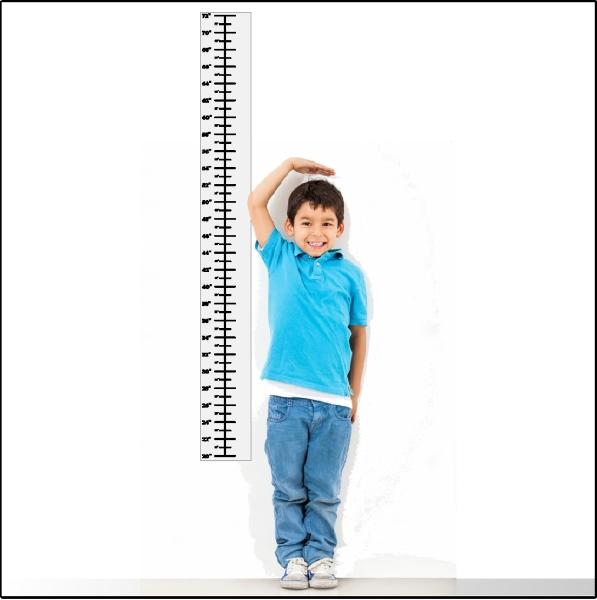 тому шкала роста человека ф картинках еще камере есть