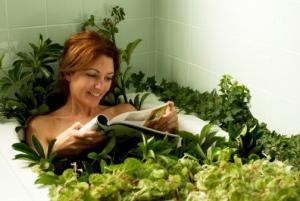 Трава чистотел что лечит при приеме внутрь? Как ее принимать?