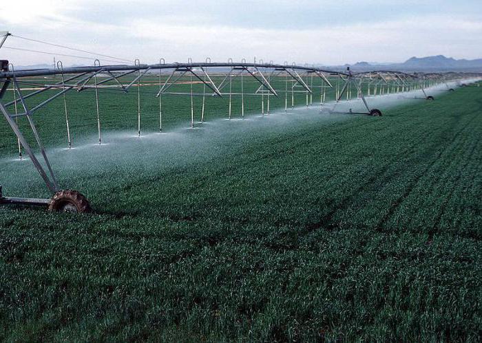 Вимоги сільськогосподарських культур до режиму зрошення в Переяславке,Емце
