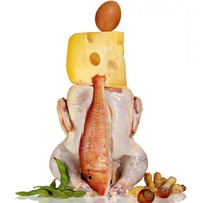 Самая эффективная белковая диета меню