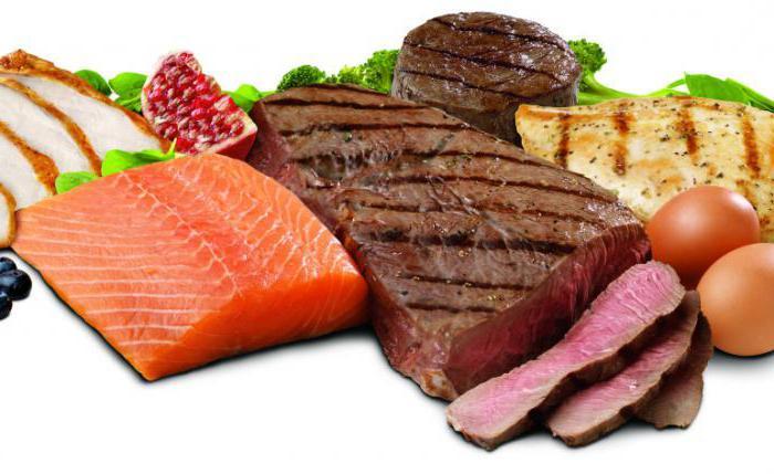 белковая диета отзывы и меню результаты