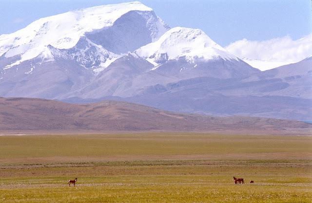 высота гималайских гор