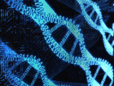 Биохимия первый скрининг
