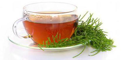 чай ройбуш отзывы