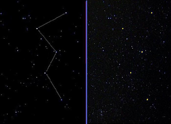 как выглядит созвездие