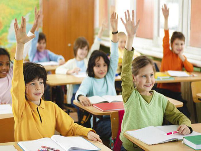 учебные заведения в которых человек получает образование