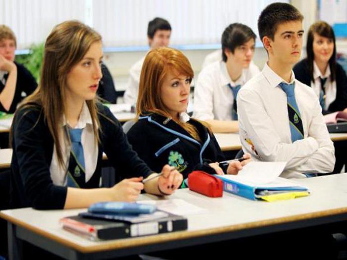 в каких учебных заведениях человек получает образование обществознание