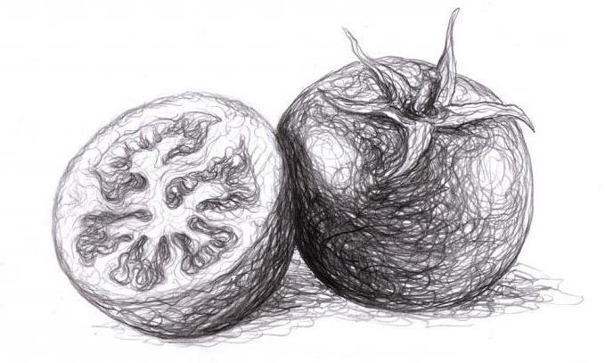 как нарисовать помидор в разрезе