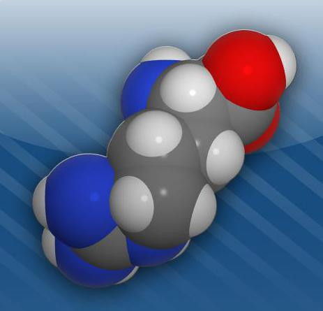 биохимия аминокислоты пептиды