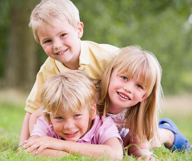 Трое детей в семье: какие положены льготы в России? Трое Детей