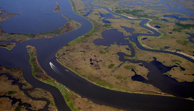 самая полноводная река конго