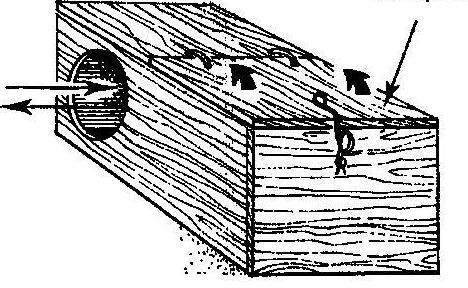размеры маточника для кроликов чертежи