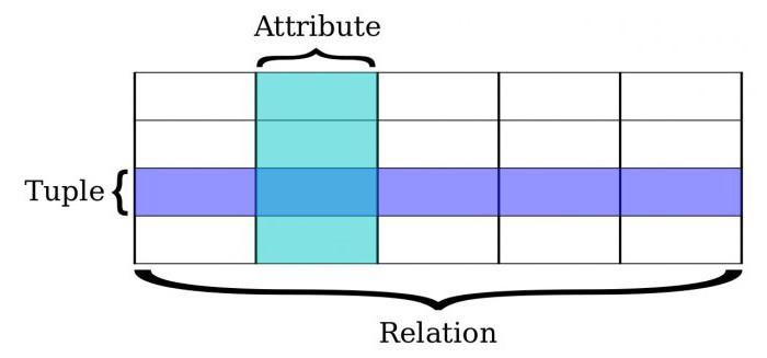 Примеры базы данных