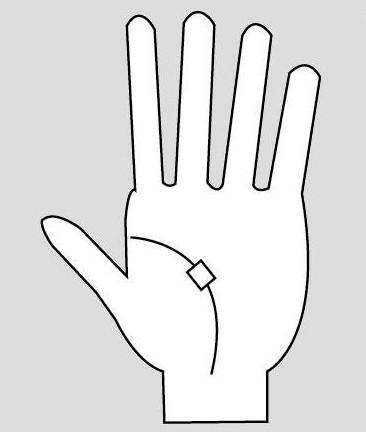 расшифровка линии жизни на руке