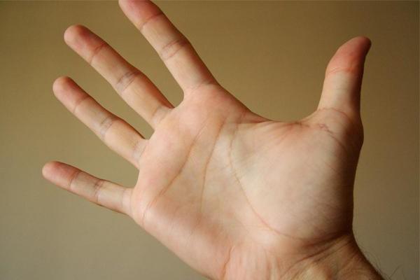 На какой руке смотрят линию жизни? Хиромантия для начинающих