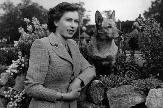 королева англии фото