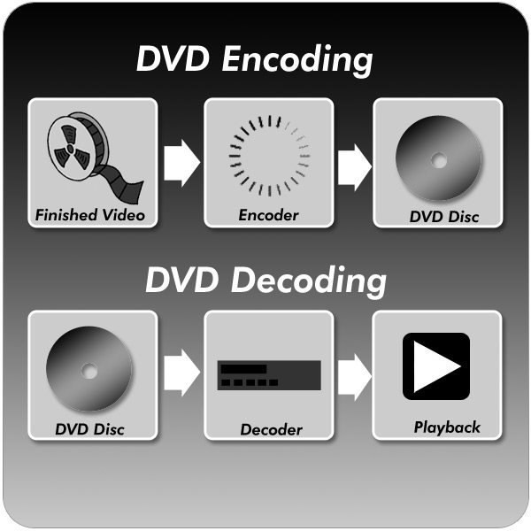 encoding decoding How does stuart hall's encoding/decoding model and his discussion of cultural codes inform our understanding of genre to what extent are.