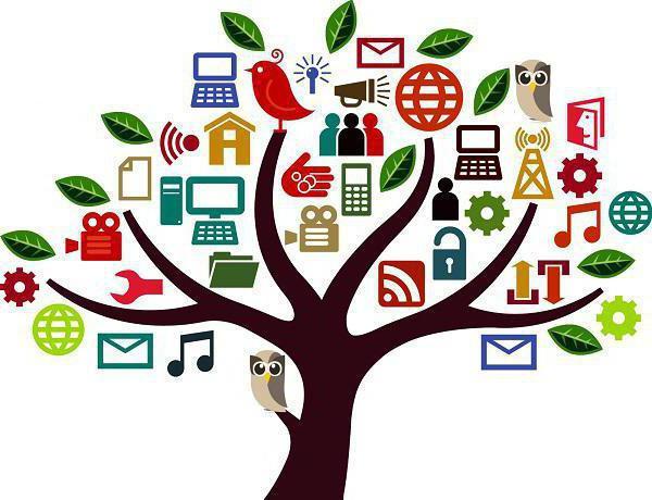 социальные проекты в школе примеры