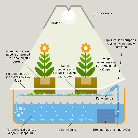 DIY hydroponic installation