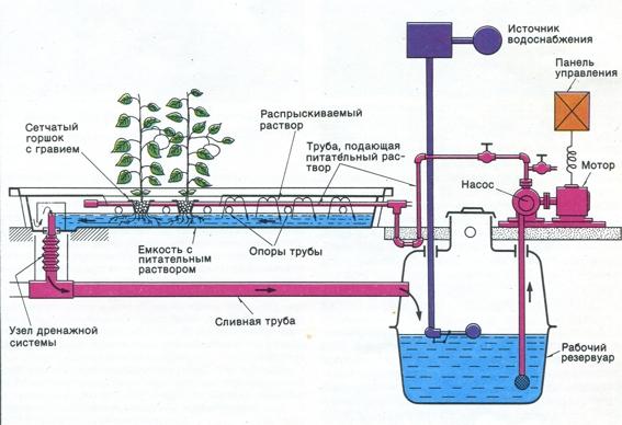 multi-tiered hydroponic installation