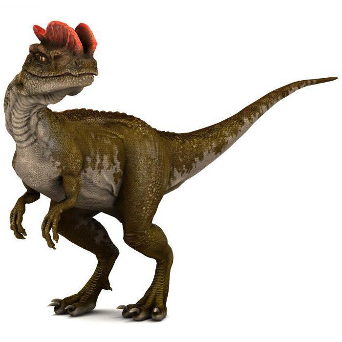 Хищные динозавры названия и