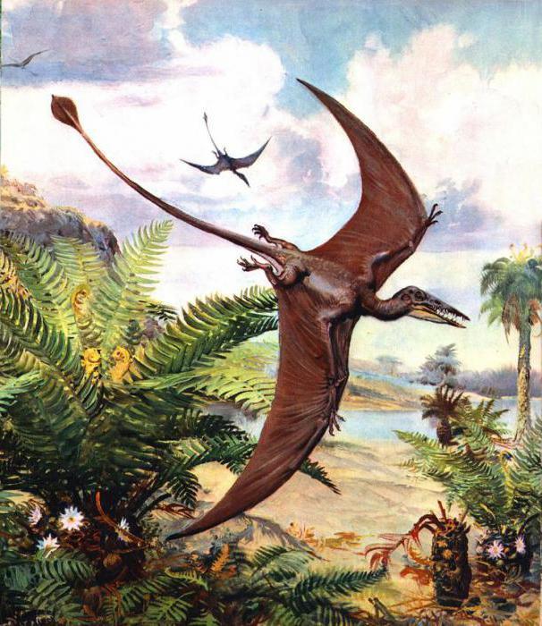 фото летающие динозавры