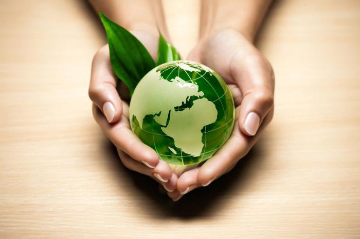 министерство экологии и природопользования московской области