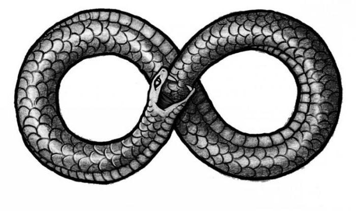 Знак змея секс