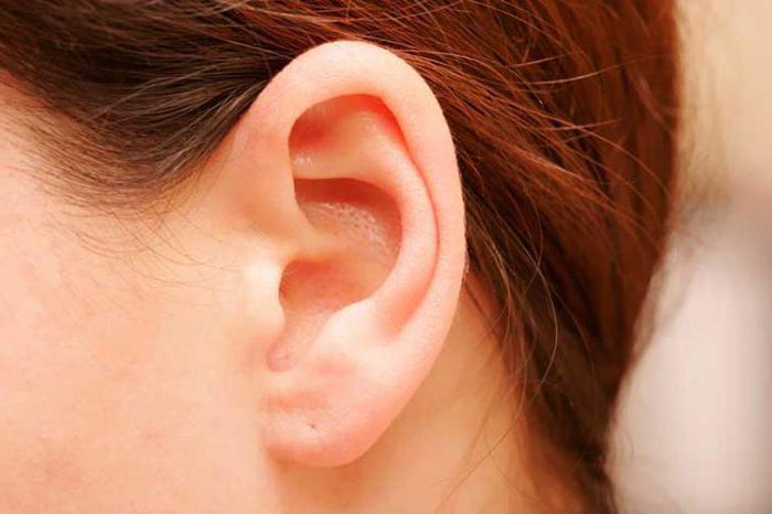 во сне видеть у себя волосы на ушах и выдергивать их