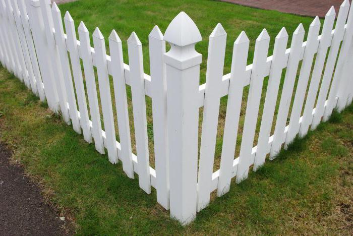 забор сонник