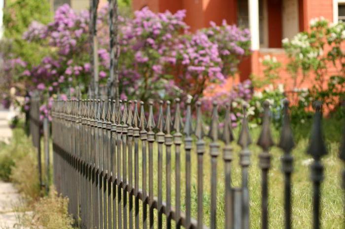сонник забор деревянный