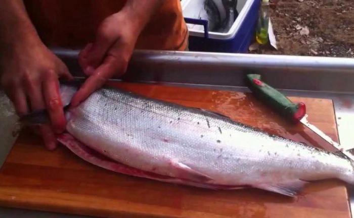 Что говорит сонник: рыбу чистить к чему снится?