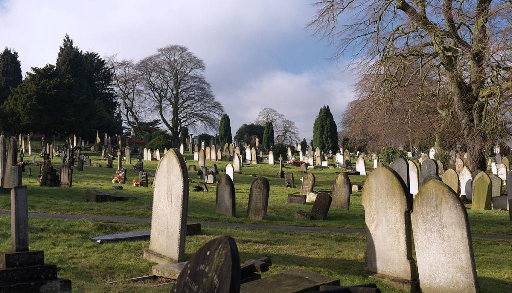 Снилось заниматься сексом на кладбище