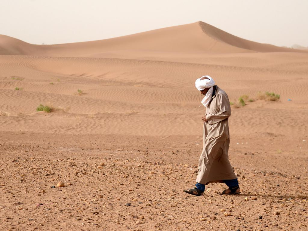 прогулка по пустыне во сне