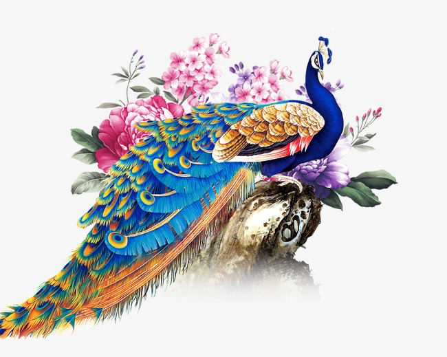 which means peacock as a symbol