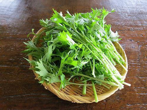 японская капуста