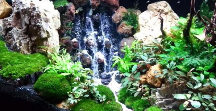 Как водопад в аквариуме своими руками