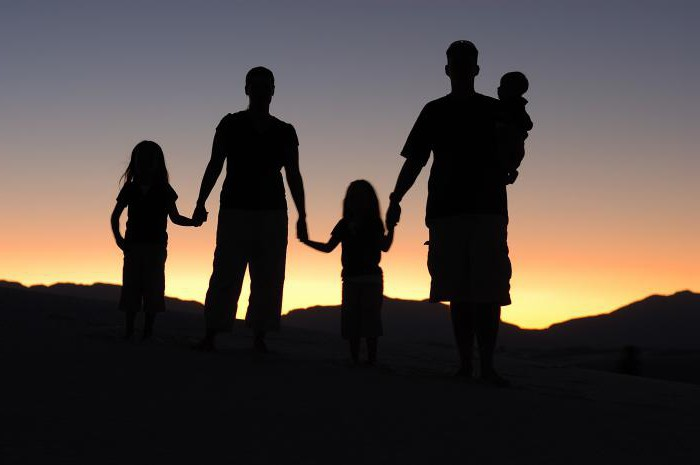 Социальный статус семьи примеры