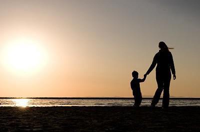 Социально экономический статус семьи