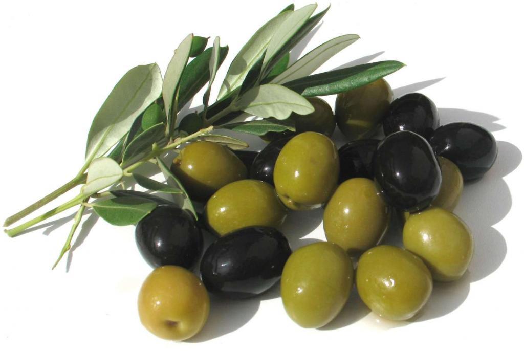 различие маслин и оливок