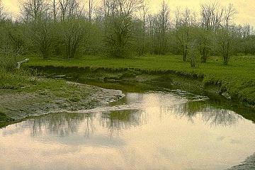 загрязнения реки теча