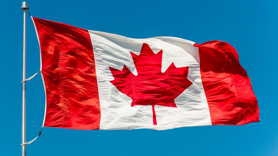 канадский флаг фото множество