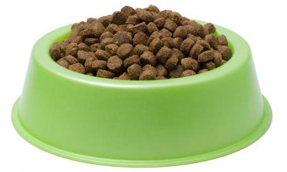 витамины для котов с хпн thumbnail